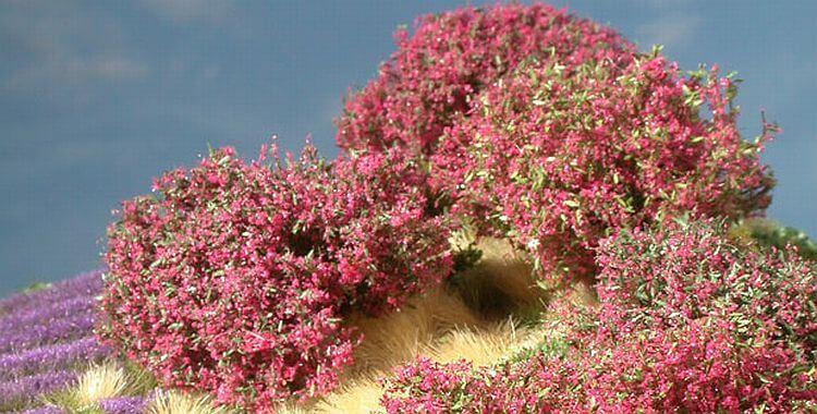 rhododendron bl hend modellbaum modellb ume 1 87 1 160. Black Bedroom Furniture Sets. Home Design Ideas