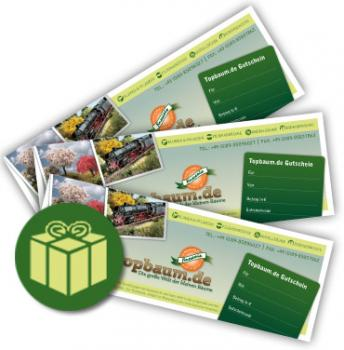 Gift certificate 50EUR