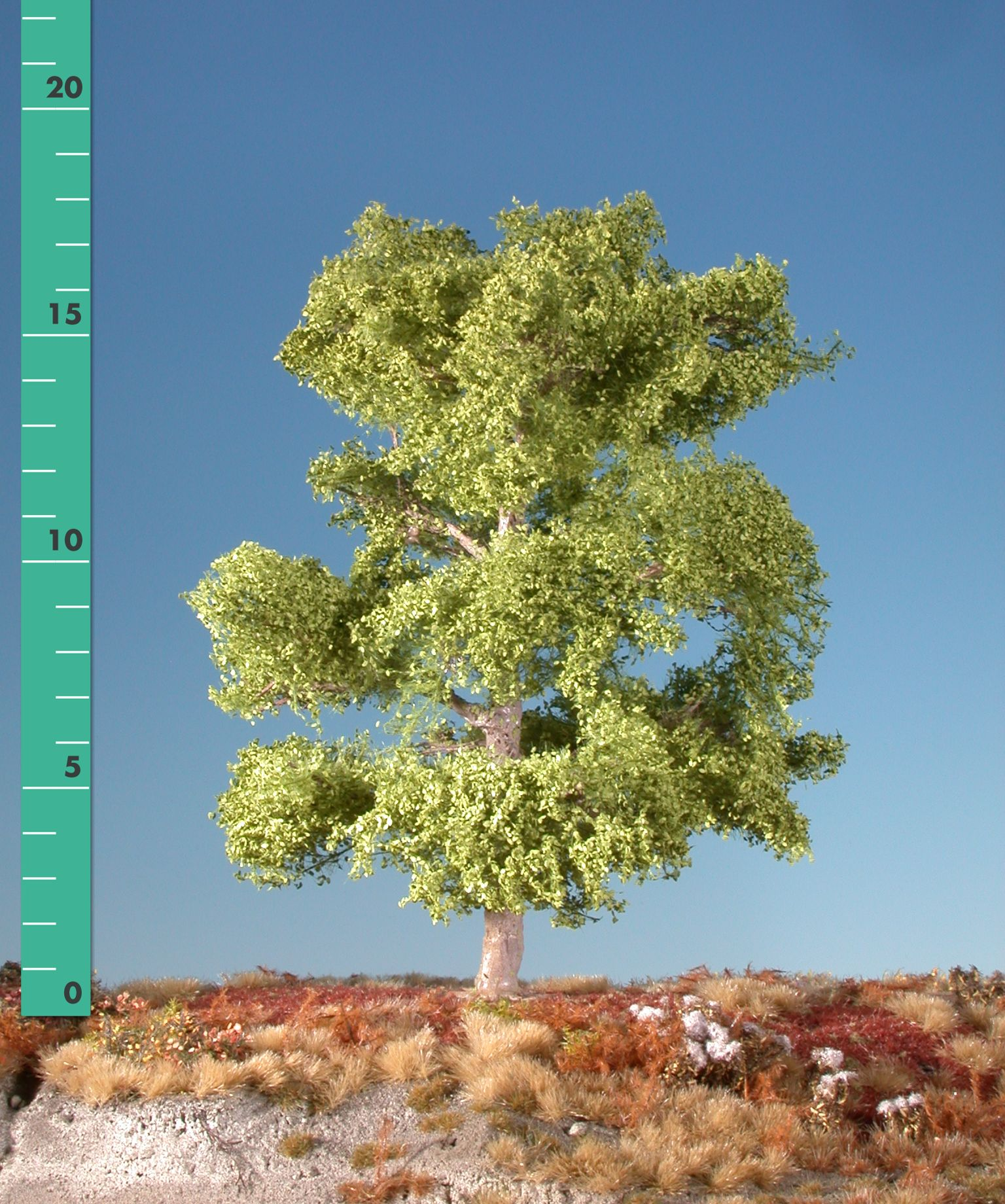 buche 1 45 fr hling modellbaum miniaturmodelle b ume pflanzen belaubung filigranb sche. Black Bedroom Furniture Sets. Home Design Ideas
